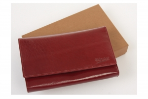 Piniginės, dėklai vizitinėms kreditinėms kortelėms