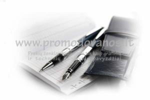 Rinkinys: metalinis tušinukas ir plunksnakotis STPL